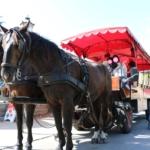 サンスーシ宮殿の馬車